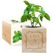 EcoCube personalizzato cornice fiorita