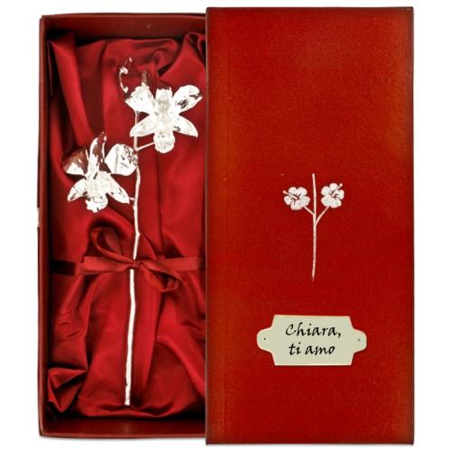 Orchidea d'argento