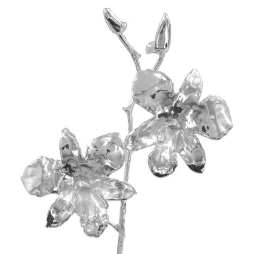 Orchidea argento personalizzata