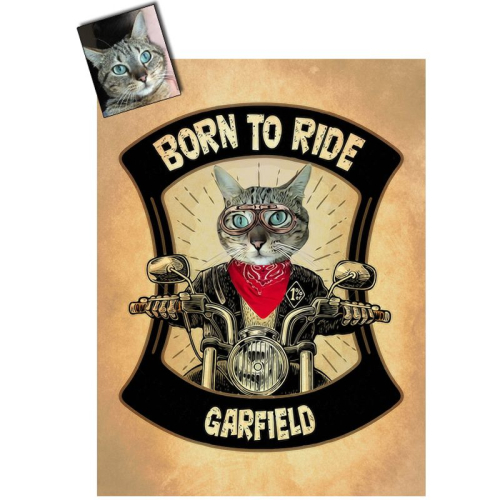 Ritratto gatto personalizzato foto
