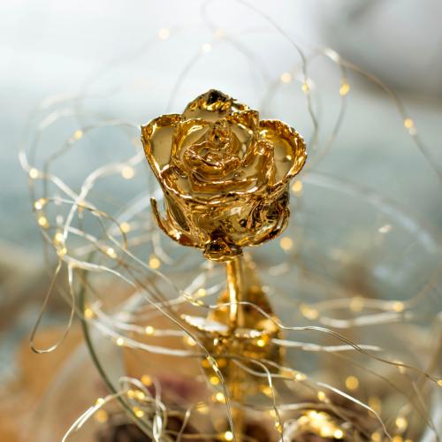 Vera rosa placcata oro